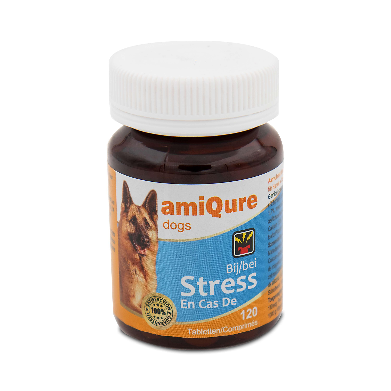 AmiQure-bij Stress